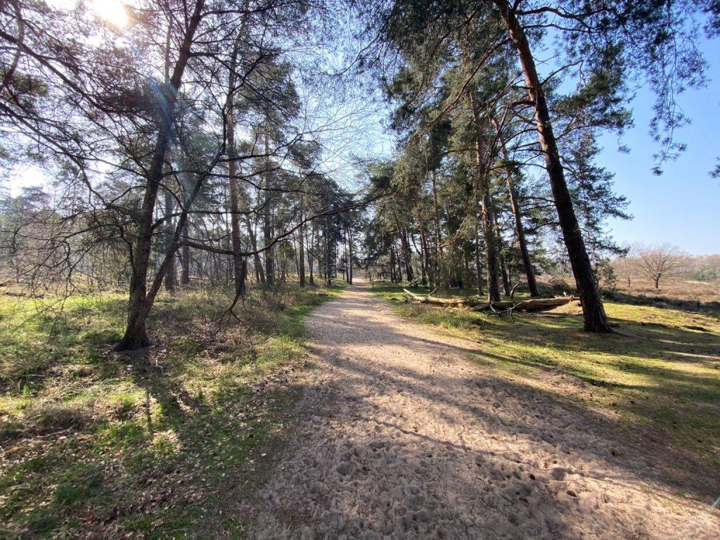 Leyenweiher Wahner Heide - Walk & Wonder