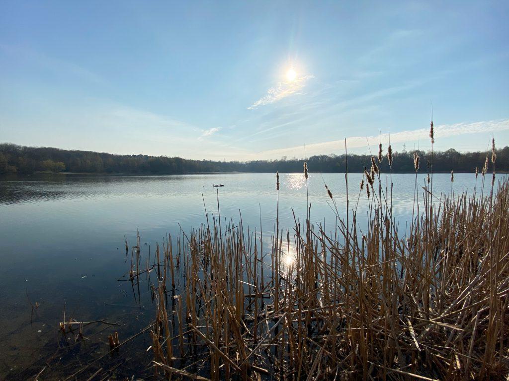 Höhenfelder See - Köln - Walk and Wonder