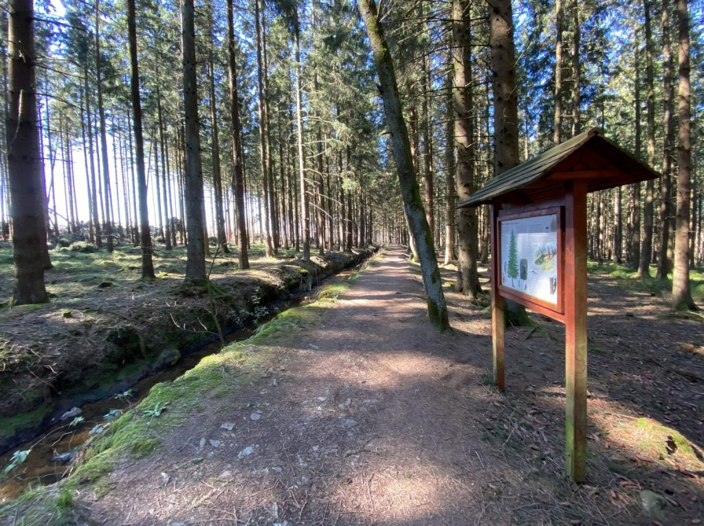 Wanderung durch das Hohe Venn Eifel - Walk & Wonder