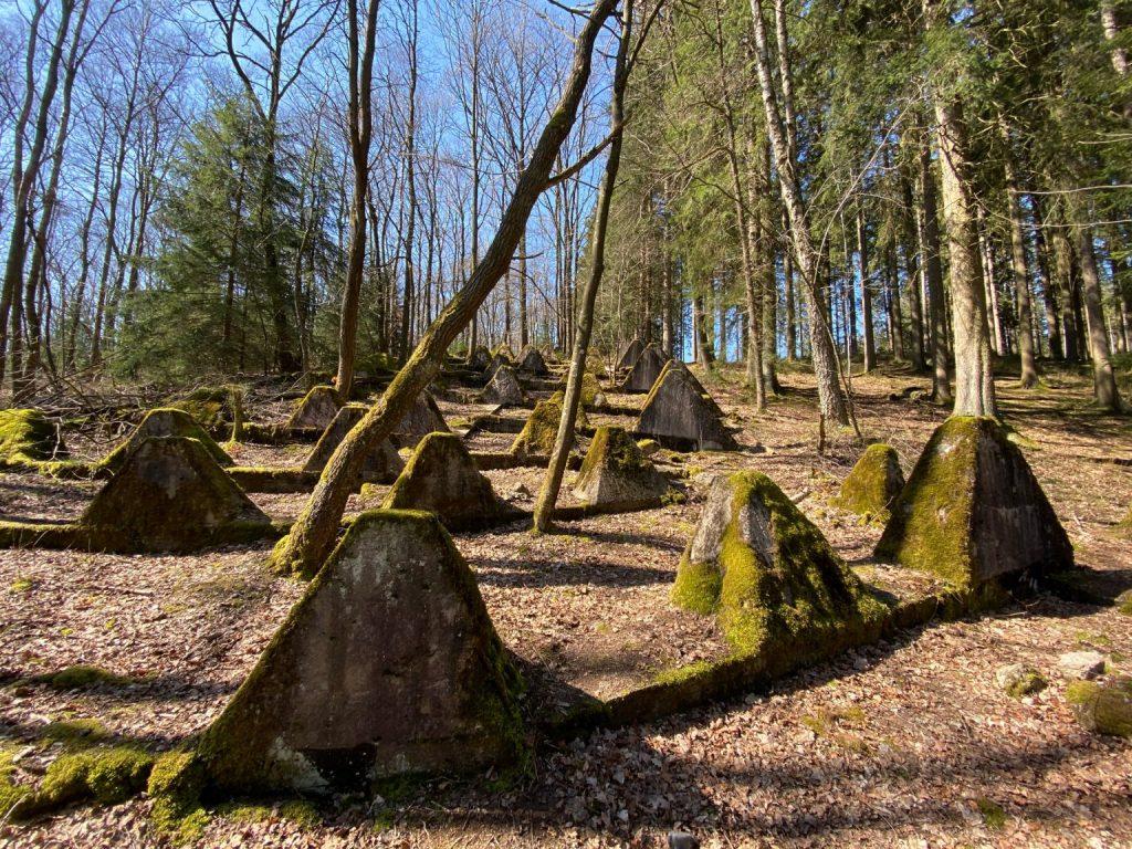 Eifel Vilsbach Denkmal - Walk & Wonder