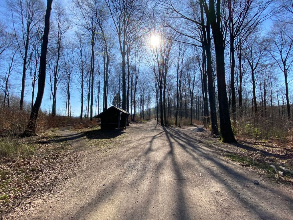 Wanderung um die Sengbachtalsperre - Walk and Wonder