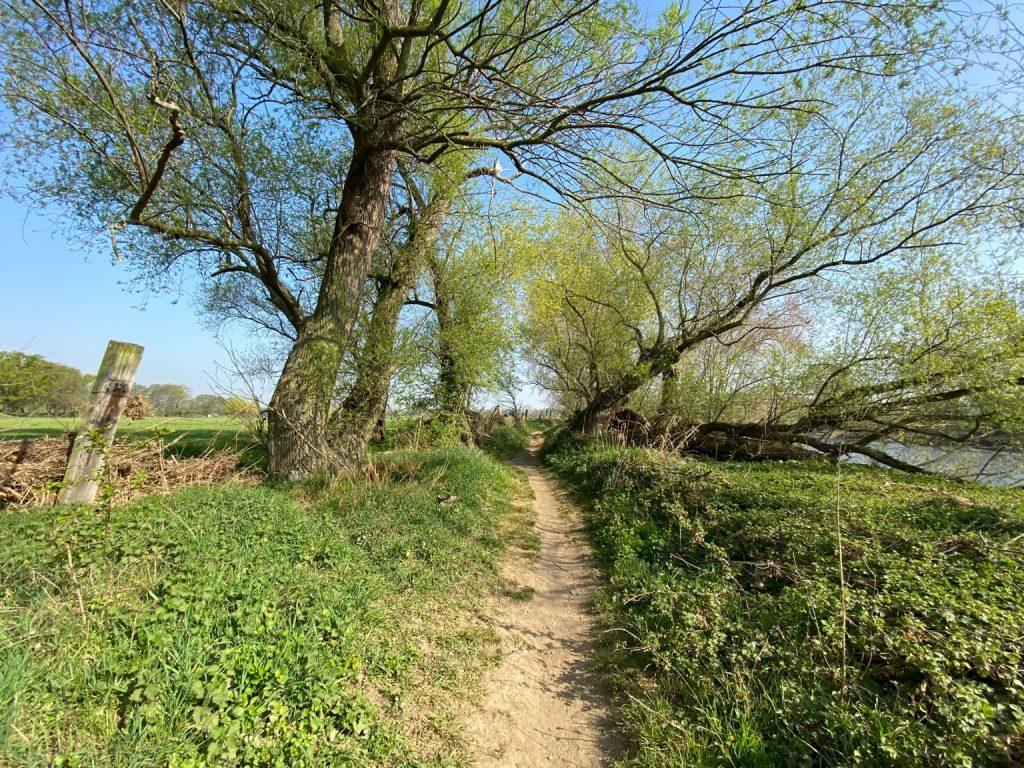 Sieglarer See Rundwanderung - Walk and Wonder