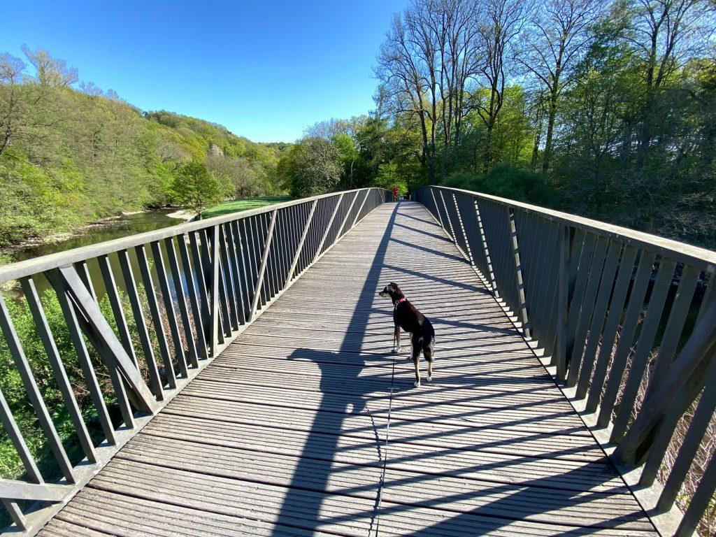 Gut Eichthal - Wanderung entlang der Agger in Overath - Walk and Wonder