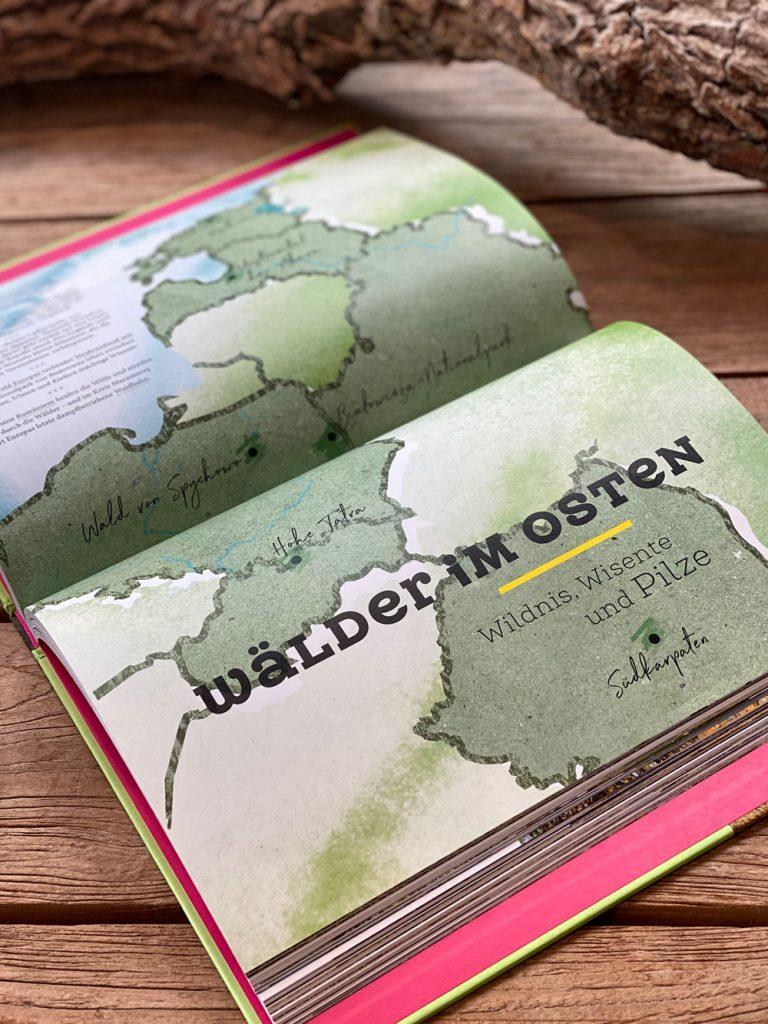 Waldwunder Buchtipp - Walk and Wonder