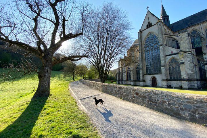 Altenberger Dom Odenthal - Wanderung - Walk & Wonder