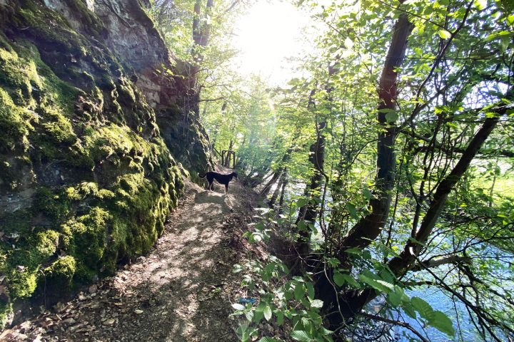 Wanderung entlang der Agger in Overath - Walk and Wonder