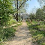 Troisdorf Wanderung um den Sieglarer See - Walk and Wonder