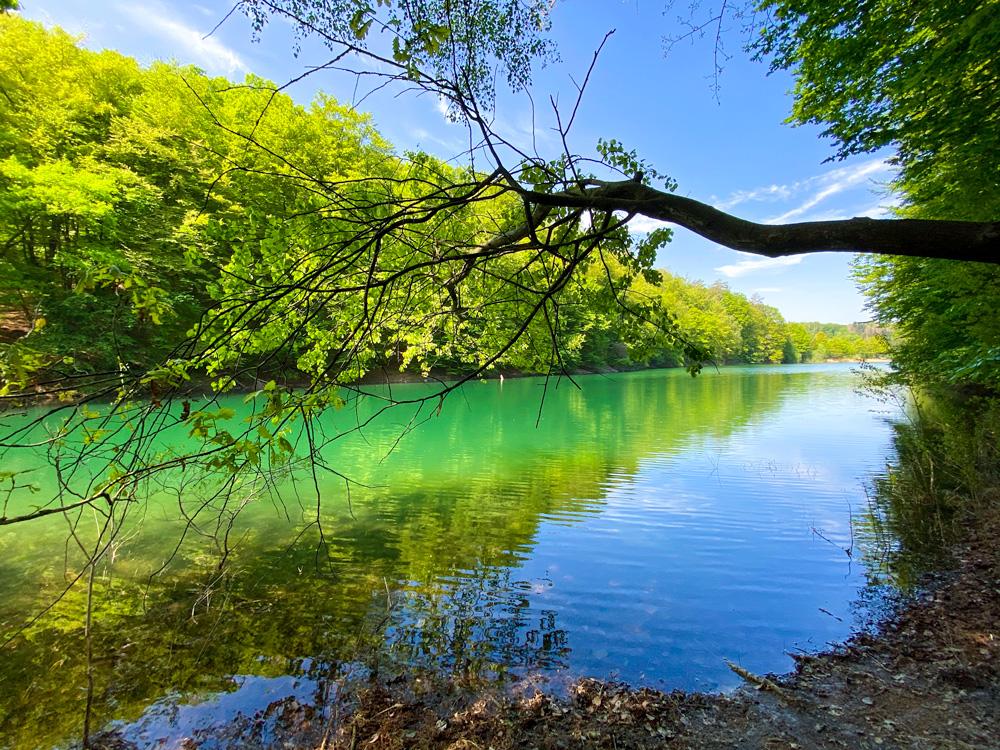 Wahnbachtalsperre türkises Wasser - Walk & Wonder