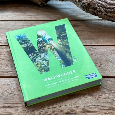 Waldwunder Buchtipp - Walk and Wonder