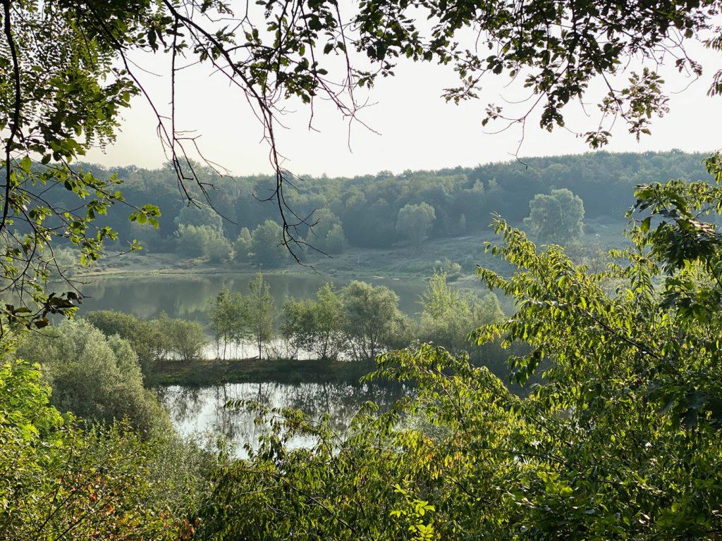 Naturschutzgebiet Am Hornpottweg Leverkusen - Walk and Wonder