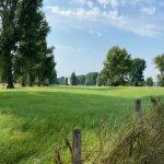 Urdenbacher Kämpe - Wanderung zum Rhein - Walk & Wonder