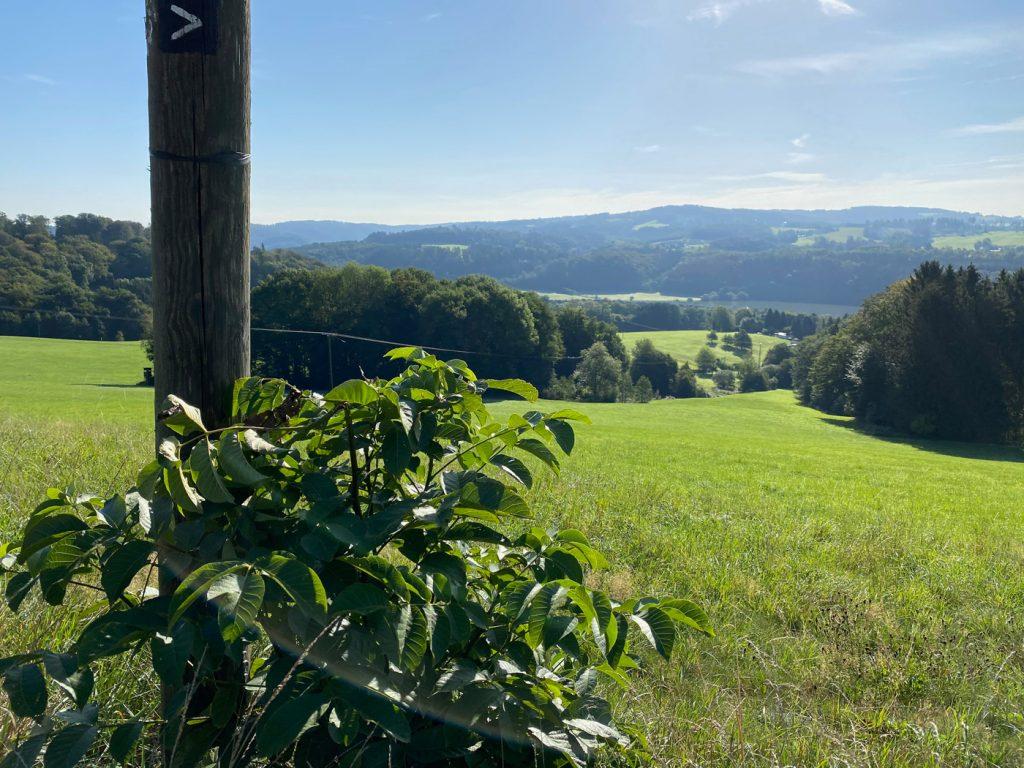 Blick auf das Aggertal - Walk and Wonder