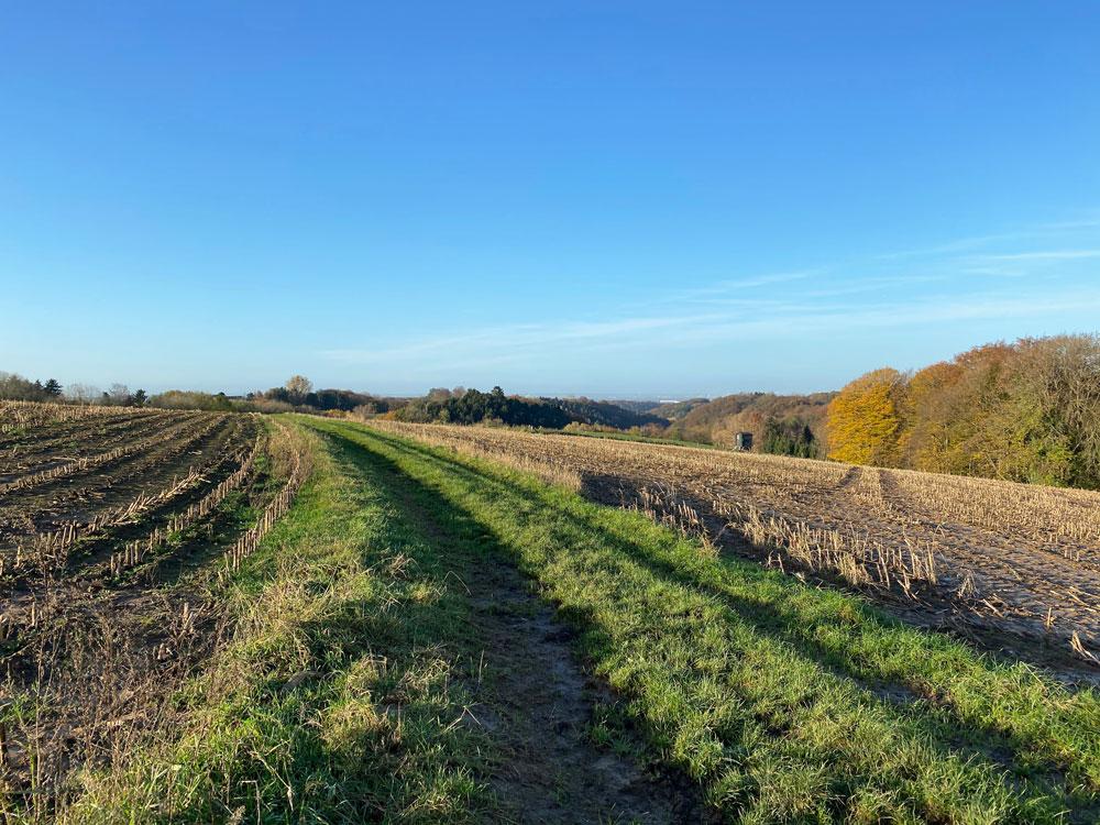 Wanderung in Oberscheid im Bergischen Land - Walk and Wonder