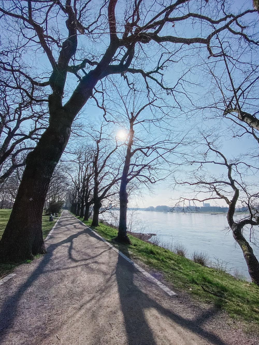 Rheinufer Stammheimer Schlosspark - Walk and Wonder