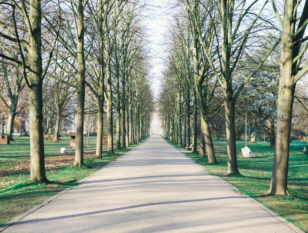 Schlosspark Stammheim - Allee zum Rhein hin - Walk and Wonder