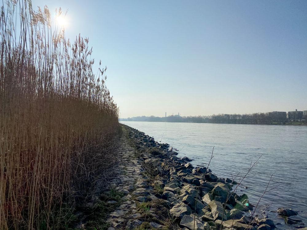 Rheinspaziergang Stammheim - Walk & Wonder