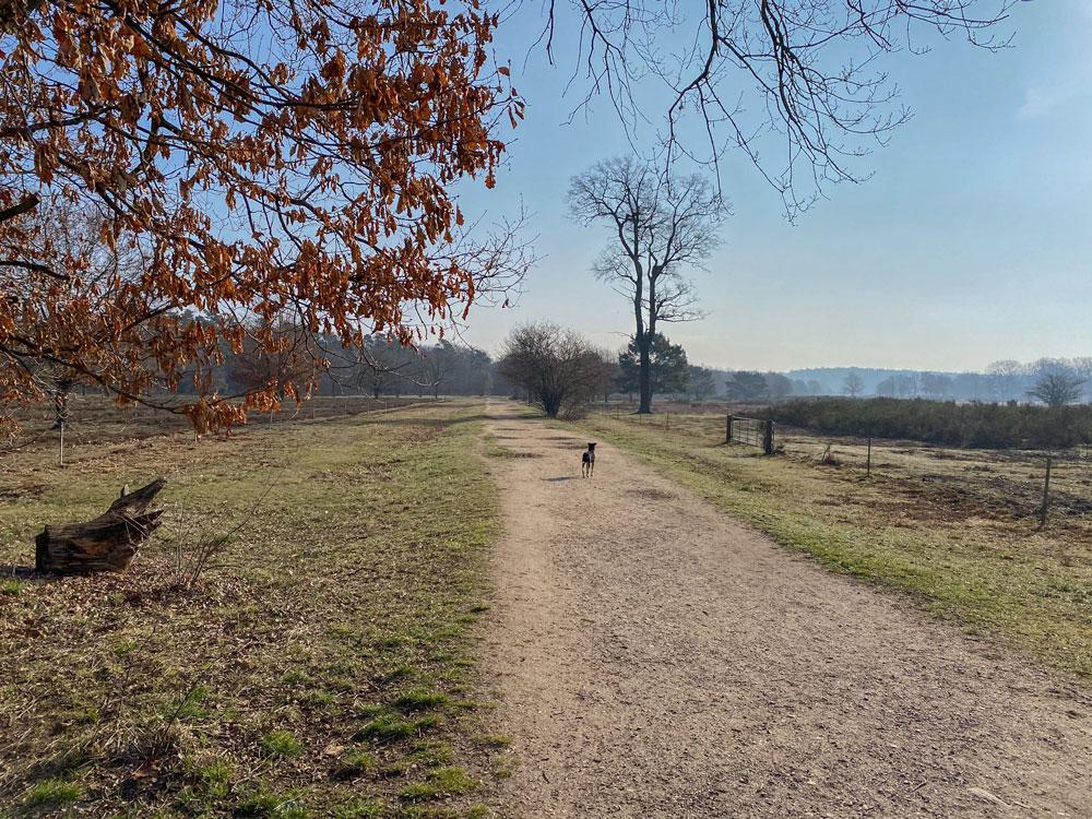 Wahner Heide Wandertipp - Walk & Wonder