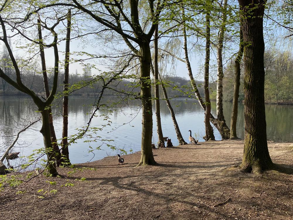 Saaler Mühle Runde - Walk and Wonder