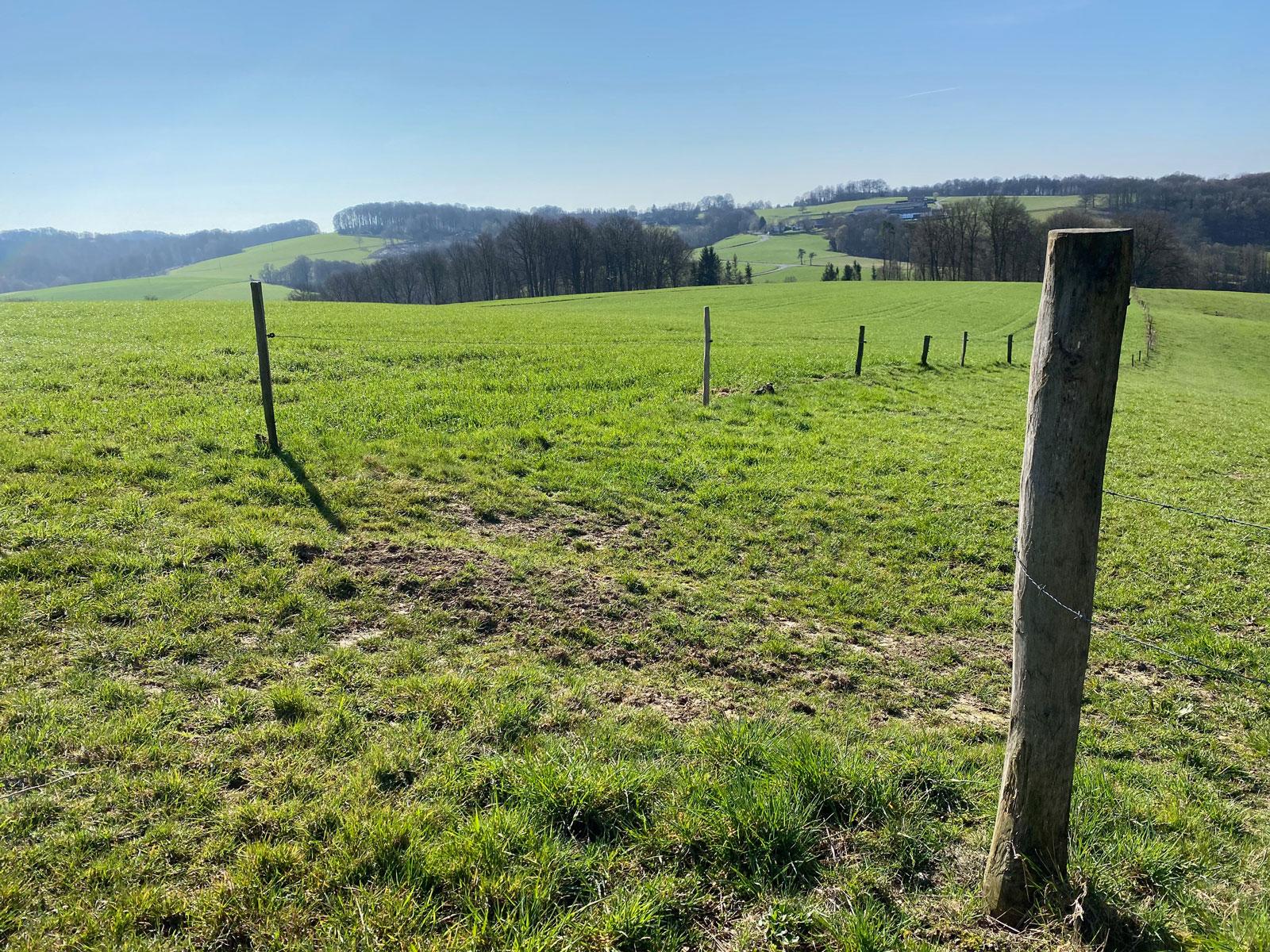 Naafbachtal Wandertipp - Walk and Wonder