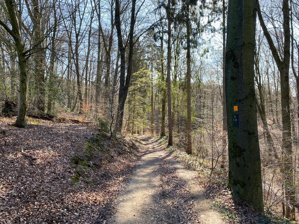 Spaziergang durch das Naafbachtal in Overath - Walk and Wonder