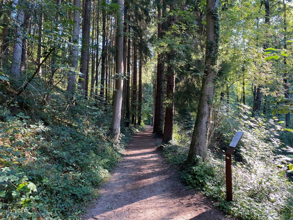 Alte Dombach Wanderweg - Walk and Wonder